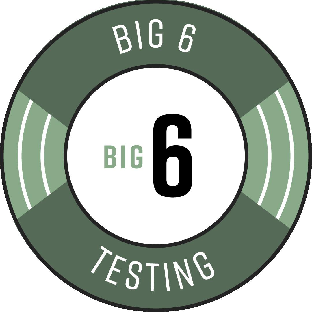 Badge-Big Six